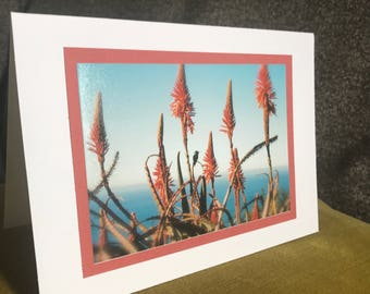 greeting card with original photography
