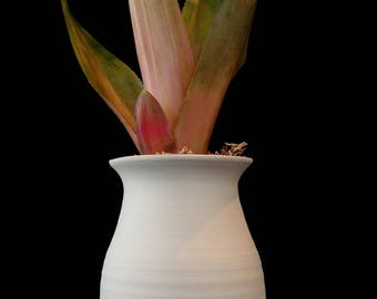 Hand thrown porcelain vessel with hot pink bromeliad