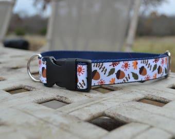 Fall Dog Collar