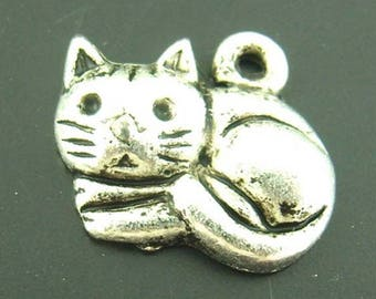 cute cat lying in silver