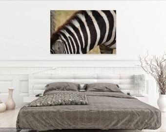 Digital Print - Zebra at Ngorogoro