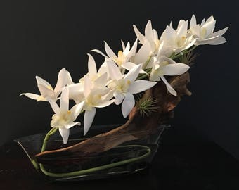 White Orchids Accent
