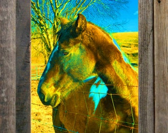 """My Good Side - FRAMED - (11"""" x 14"""") FREE SHIPPING!"""