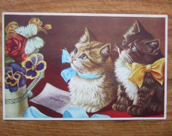 1930ies   postcard  CATS with Bants  Latvia edit.