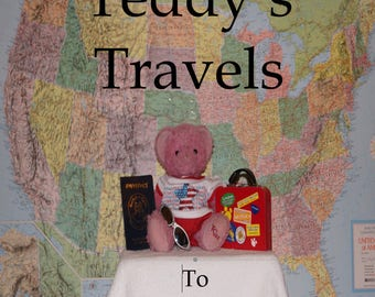 Teddy's Travels To Illinois