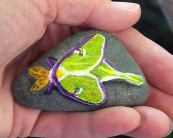 Luna Moth Original Painted Stone - Insect Art - Natural Home Decor - Collectible Rock Painting - One of a Kind Unique - Signed