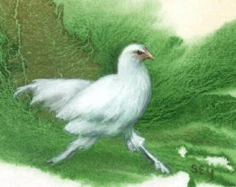 "ACEO Limited Edition Print - Chicken - Reproduction - 2 1/2"" x 3 1/2"" - Bird Painting - Green & White - Artist Trading Cards - Art Card"