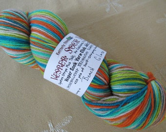One Skein Hand Dyed Artisan Vesper Striping Yarn Exclusive Sock Club July 2015 Colorway Beach Glass Knitterly Things Wool Nylon