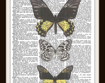 Butterfly Illustration -Black and Yellow- Vintage Dictionary Art Print--Fits 8x10 Mat or Frame