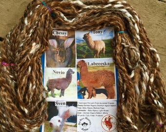 Baby Alpaca, Angora Rabbit, 5 animals, art yarn, hand spun, 4 ounces, 45 yards, 2 ply, 8wpi, one of a kind