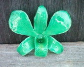 Free Shipping REAL Natural Turquoise Green ORCHID in Poly Resin Pin and Pendant
