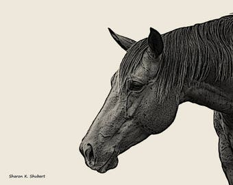 Horse Drawing Art, Gray Black, Southwestern Farmhouse Ranch, Rustic Cabin, Texas Home Decor, Farm Animal, Wall Hanging, Giclee Print, 8 x 10