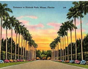 Vintage Florida Postcard - Entrance to Hialeah Park Racetrack (Unused)
