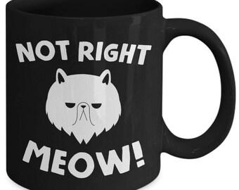 Not Right Meow Grumpy Feline Coffee Mug