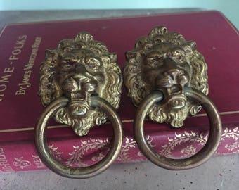 Pair of brass lion drawer pulls