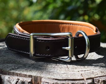 Wide Padded Leather Dog Collar - size M