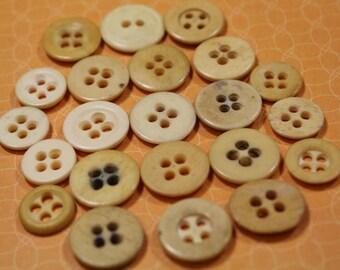 Antique Bone Buttons 22 Underwear Bone Buttons Reenactment 4 Hole Button