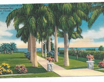 Vintage Florida Linen Postcard Miami Royal Palm Lined Walk to Biscayne Bay USED