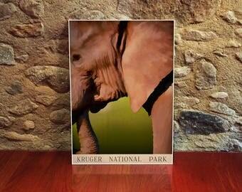 Elephant Poster 12x18 Art Print Kruger National Park South Africa Vintage Travel Poster Wildlife Art Elephant Gifts