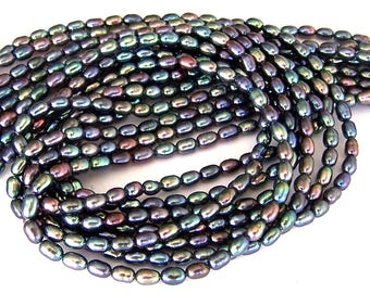 Peacock freshwater rice pearls, TINY 4mm peacock pearls, rainbow iridescent, multicolor rice, one 16 inch strand