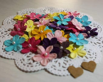 Petite Paper Flowers with Pearl Centres ~ Tropical Mix ~ *Cards *Gifts * Tags *Crafts*