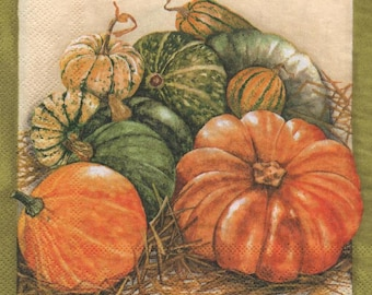 3146 - Napkin varieties of pumpkins
