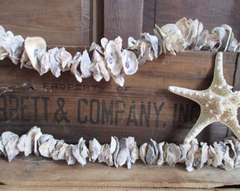 "Nautical Driftwood Oyster Shell Garland, 74"""