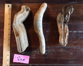 "Bundle of three (3) interesting driftwood pieces, each about 8"" or 9"""