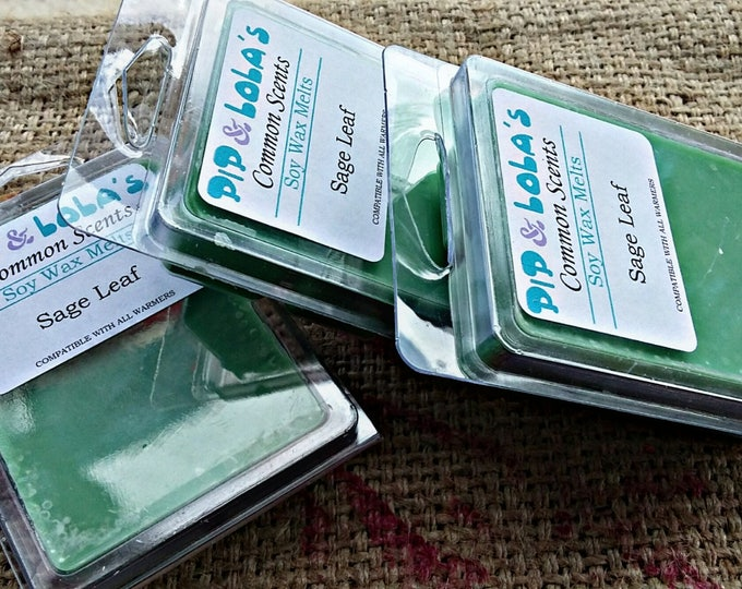 Sage Leaf Wax Melt - Pip & Lola's Common Scents - Soy Candle Wax, Wax Tarts, Wax Melt, Soy Wax, Clamshell Melts, Candle melt, Wax warmer
