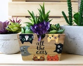 All the Cats, Gift for Gardener, Cat Lover Gift, Cute Succulent Planter, Decorative Bin, Rustic Planter Box, Garden Box, Wooden Box, Rustic