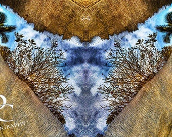 "11x17 Print, Digital Montage, ""Spiritual Reflection""."