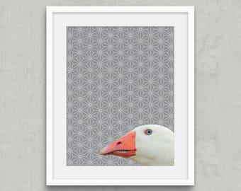 Goose Portrait Printable Art, Photo Montage Animal Wall Art, Goose photography, Nature Art, Grey Bathroom Art, Geometric Digital Printable