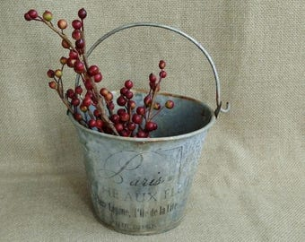 Vintage Small Galvanized Pail w/Weathered Patina and Paris Lettering