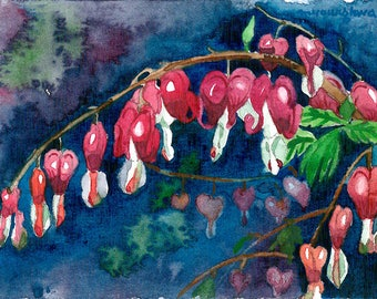 ACEO Limited Edition 2/25 - At the summer garden, Bleeding heart flower, Art print of an original ACEO watercolor painted by Anna Lee