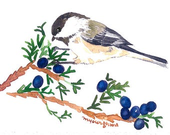 ACEO Limited Edition 1/25- Chickadee in a red cedar tree, Cute bird art print of an original watercolor, Gift for bird lovers