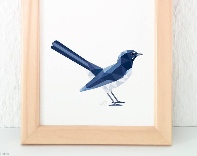 Willie wagtail illustration, Willy wagtail print, Native Australian bird art, Common Australian bird art, Wagtail art, Australian wildlife