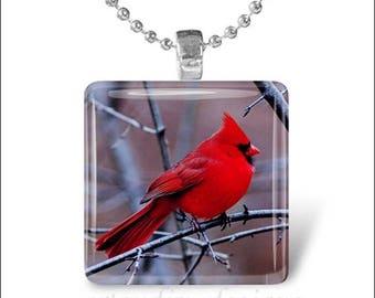 10% OFF JUNE SALE : Cardinal Bird Red Cardinal Spring Bird Glass Tile Pendant Necklace Keyring design 1