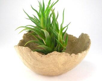 Small Bonsai Pot, Light Tan Kusamono Planter, Bonsai Accent Pot, Natural Succulent Planter, Eggshell Planter, Scrap Clay Plant Pot 02-17-04