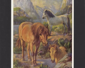 Norwegian Pony Print 1923 By Edward Miner Print of Signed Painting Mounted with Mat - Norwegian Horse Print Norwegian Print Norway Pony