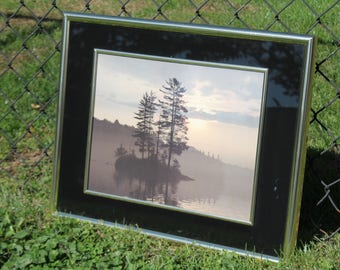 Silhouette Tree Print in a Black and Gold Metal Frame