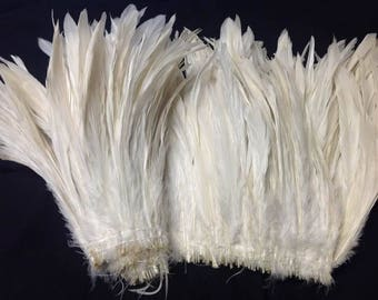 """Natural White Rooster Tail Feathers.  3"""" Pack Of 8"""" - 10"""" in Length."""