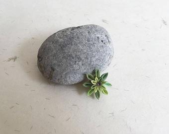 Lapel pin Green flower LP018