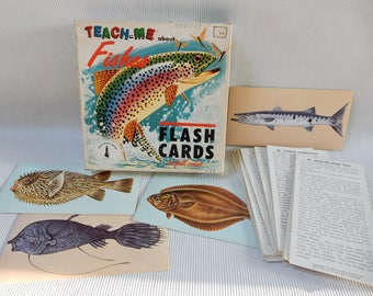 McGraw Hill 1962 Fish Flash Cards