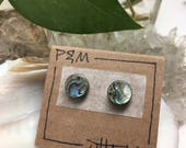 Abalone Shell Stud Earrings - Beautiful, Natural Iridescence, Lovely Rainbows - Surgical Steel Posts