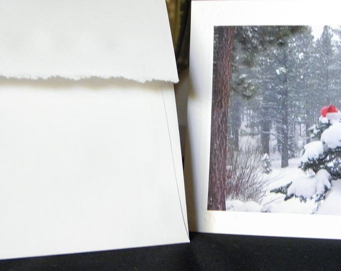 ELUSIVE SANTA 12-piece Card Set created by Pam Ponsart of Pam's Fab Photos; includes Free Shipping