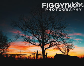 Country Landscape, Rural Photography, Sunset Silhouette, 8x10 Photography Print