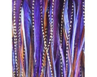 "8""-12"" Purple and Brown Remix 5 Feathers"