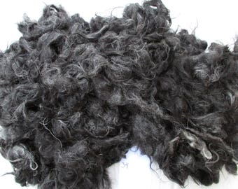 One whole raw fleece of Helsinge wool, 1.0 kg, felt, decorate, nearly black with grey hairs, produced in Sweden, heritage breed, no 34