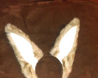 Upright Rabbit Ears