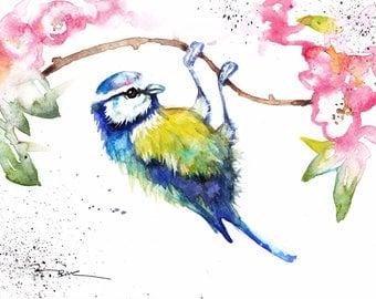 Blue Tit and Blossom, Blank card, Birthday, Anniversary, Celebration, Watercolour Art Print card